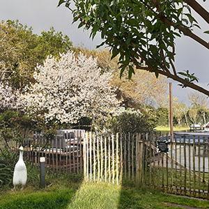 jardin-maison-hote