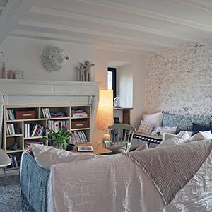 salon-bibliotheque-cozy